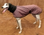 Raincoat/Windbreaker with Snood